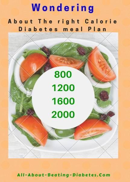 calorie diabetes meal
