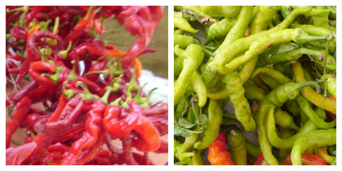 Red, White, Yellow, every type of hot chillies