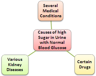 Causes of High Sugar in Urine