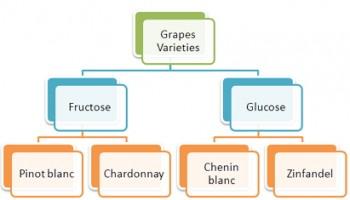 grapes glucose