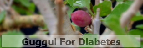 guggul herbs benefits diabetes