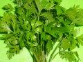 parsley vanadium