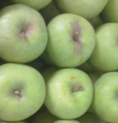 Apple And  Type 2 Diabetes