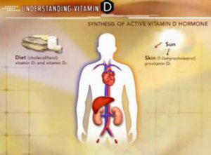 vitamin d diabetes