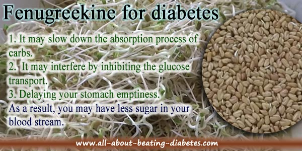 Fenugreek For Diabetes