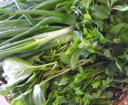 Spinach, Fresh Sorrel Leaves, Spring onion, Fresh mint leaves, Parsley