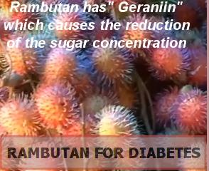 Rambutan For Diabetes
